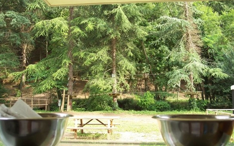 Visit costa degli etruschi tutte le migliori offerte annunci e prenotazioni alberghiere della - Il giardino degli etruschi ...